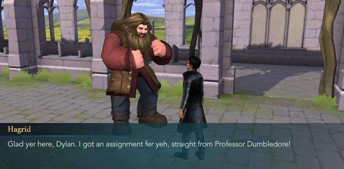 Harry Potter Poudlard Mystery Horsing Around Year 2 Hagrid Friend