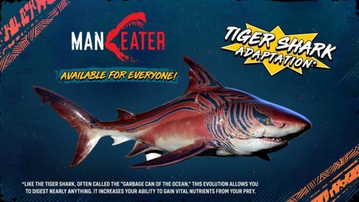 Requin-tigre Maneater